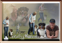 rally_obedience2